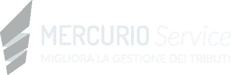 Mercurio Service S.r.l.